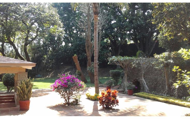 Foto de departamento en renta en  , rancho cortes, cuernavaca, morelos, 1168765 No. 04