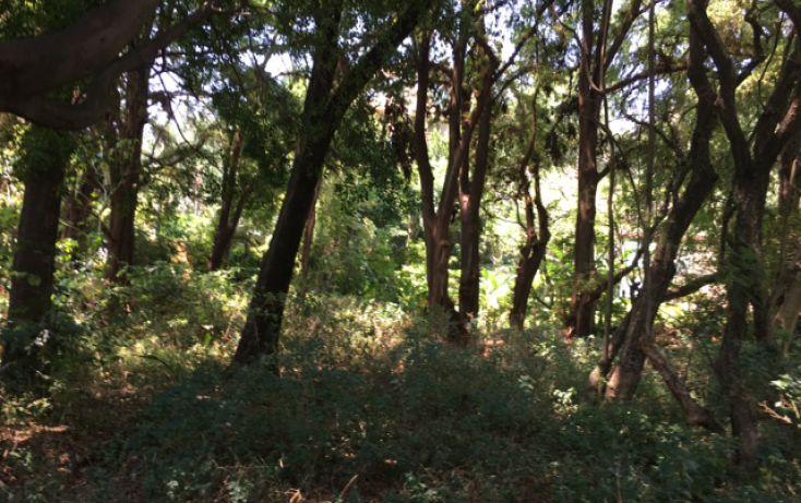 Foto de terreno habitacional en venta en, rancho cortes, cuernavaca, morelos, 1971105 no 06