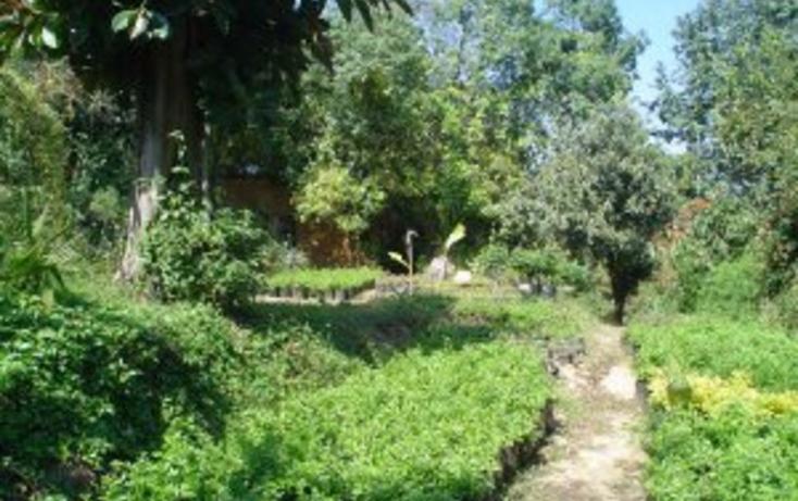 Foto de terreno habitacional en venta en  , rancho cortes, cuernavaca, morelos, 2011184 No. 02