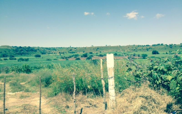 Foto de terreno comercial en venta en rancho el saucillo 00, el saucillo, cocula, jalisco, 628263 No. 09
