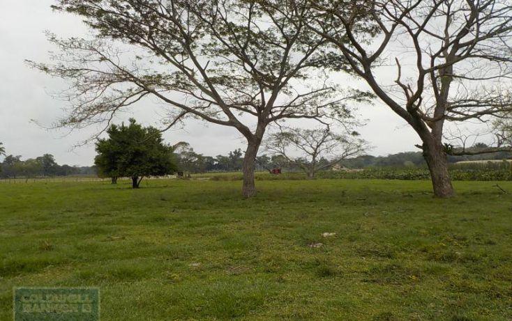Foto de rancho en venta en rancho en venta en carretera crdenas comalcalco, tulipán, cunduacán, tabasco, 1690516 no 01