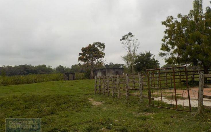 Foto de rancho en venta en rancho en venta en carretera crdenas comalcalco, tulipán, cunduacán, tabasco, 1690516 no 02