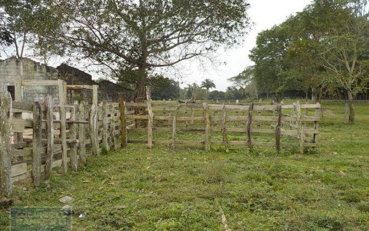 Foto de rancho en venta en rancho en venta en carretera crdenas comalcalco, tulipán, cunduacán, tabasco, 1690516 no 03