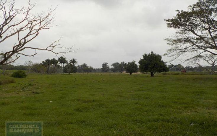 Foto de rancho en venta en rancho en venta en carretera crdenas comalcalco, tulipán, cunduacán, tabasco, 1690516 no 04