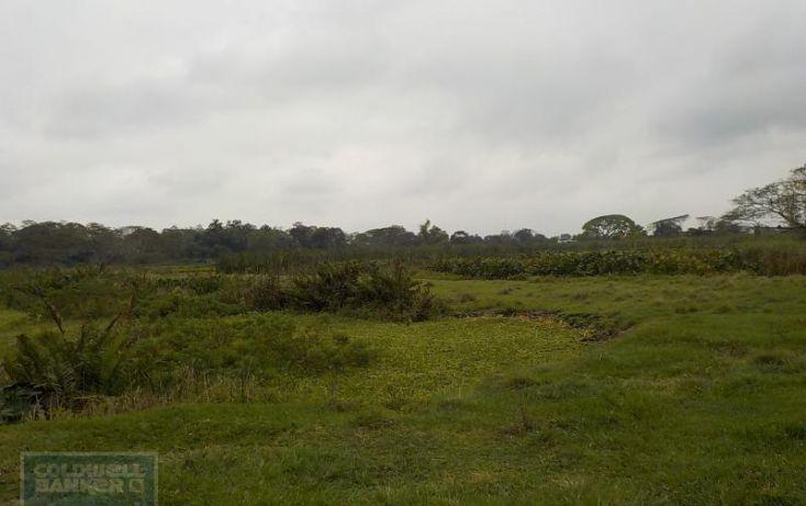 Foto de rancho en venta en rancho en venta en carretera crdenas comalcalco, tulipán, cunduacán, tabasco, 1690516 no 05