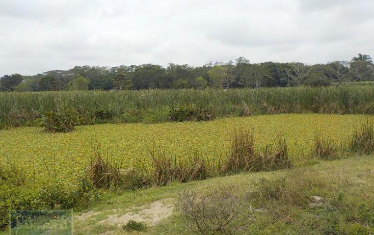 Foto de rancho en venta en rancho en venta en carretera crdenas comalcalco, tulipán, cunduacán, tabasco, 1690516 no 06
