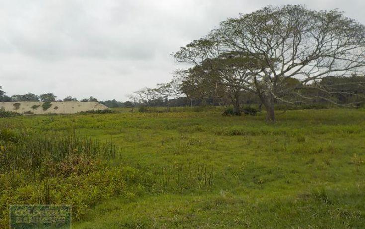 Foto de rancho en venta en rancho en venta en carretera crdenas comalcalco, tulipán, cunduacán, tabasco, 1690516 no 08