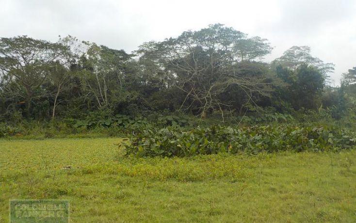 Foto de rancho en venta en rancho en venta en carretera crdenas comalcalco, tulipán, cunduacán, tabasco, 1690516 no 09