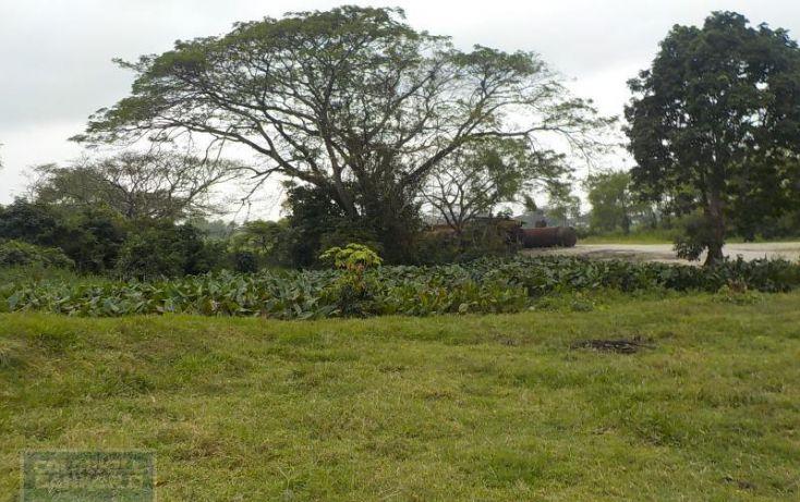 Foto de rancho en venta en rancho en venta en carretera crdenas comalcalco, tulipán, cunduacán, tabasco, 1690516 no 10