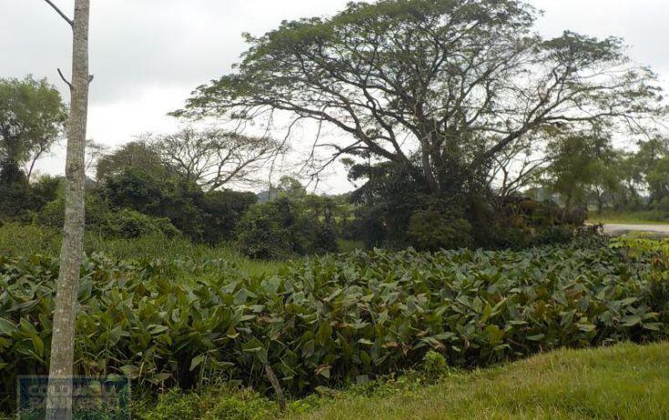 Foto de rancho en venta en rancho en venta en carretera crdenas comalcalco, tulipán, cunduacán, tabasco, 1690516 no 11