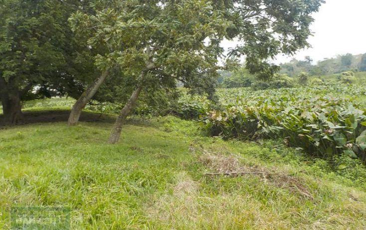Foto de rancho en venta en rancho en venta en carretera crdenas comalcalco, tulipán, cunduacán, tabasco, 1690516 no 12