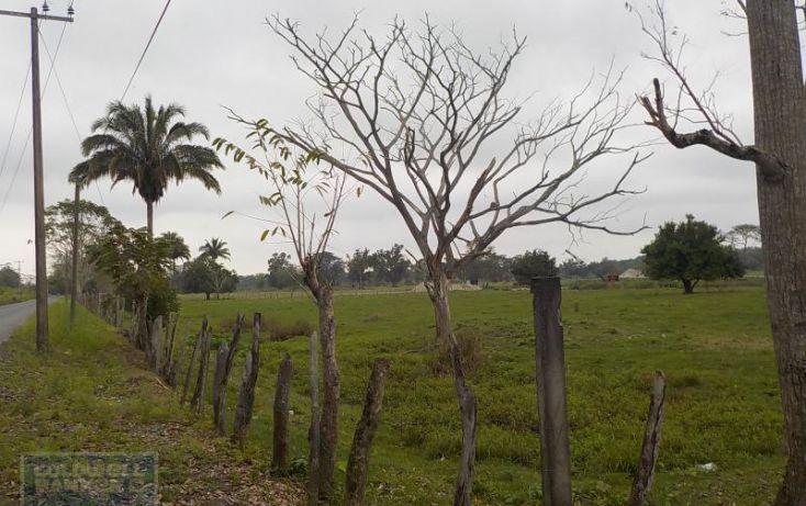 Foto de rancho en venta en rancho en venta en carretera crdenas comalcalco, tulipán, cunduacán, tabasco, 1690516 no 13