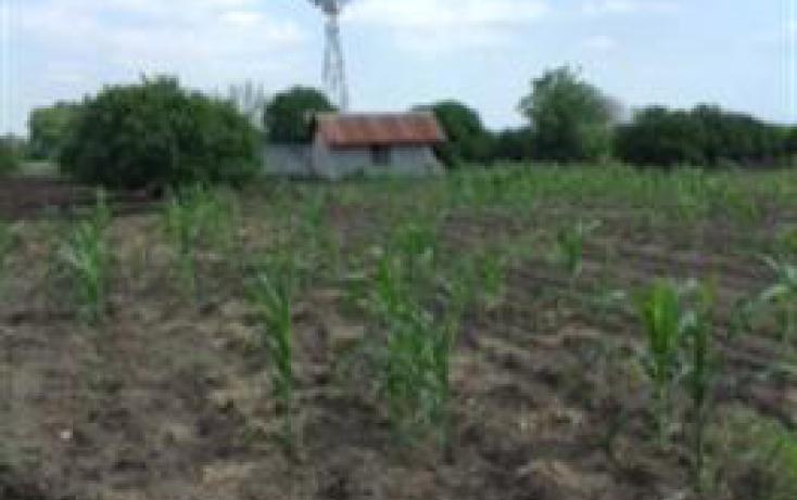 Foto de rancho con id 312106 en venta en km carretera a cadereyta 125 santa isabel no 04