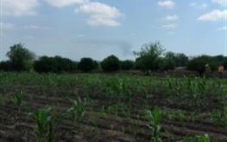 Foto de rancho con id 312106 en venta en km carretera a cadereyta 125 santa isabel no 05