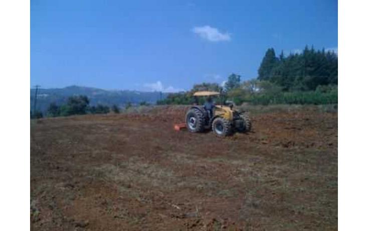 Foto de rancho con id 328589 en venta en madroños ixtlahuaca de villada no 04