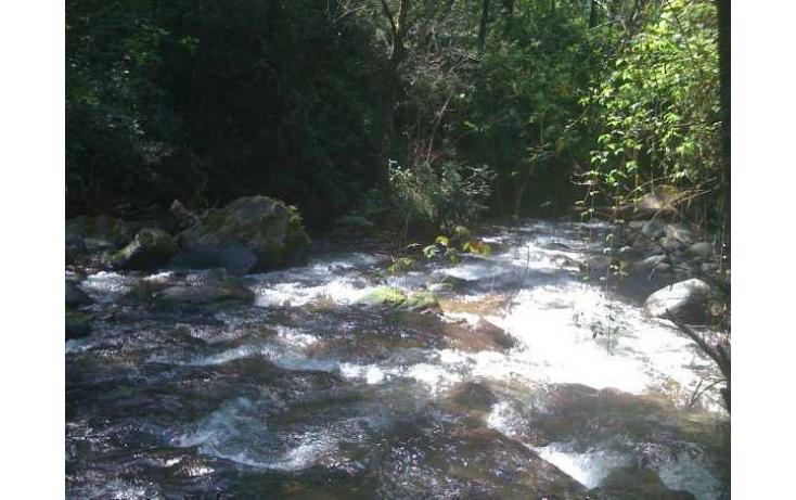 Foto de rancho con id 328589 en venta en madroños ixtlahuaca de villada no 06