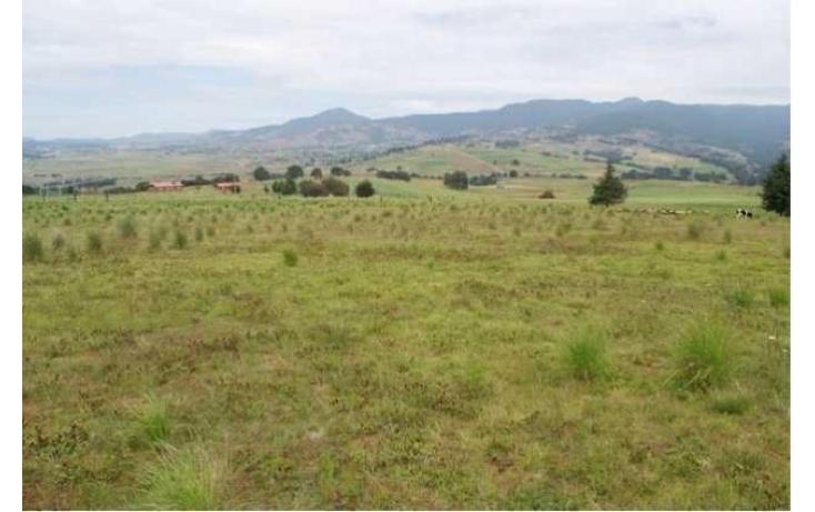 Foto de rancho con id 87047 en venta en paraje de los negritos cadenqui no 02