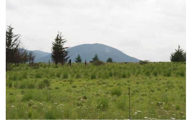 Foto de rancho con id 87047 en venta en paraje de los negritos cadenqui no 03