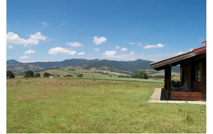 Foto de rancho con id 87047 en venta en paraje de los negritos cadenqui no 04