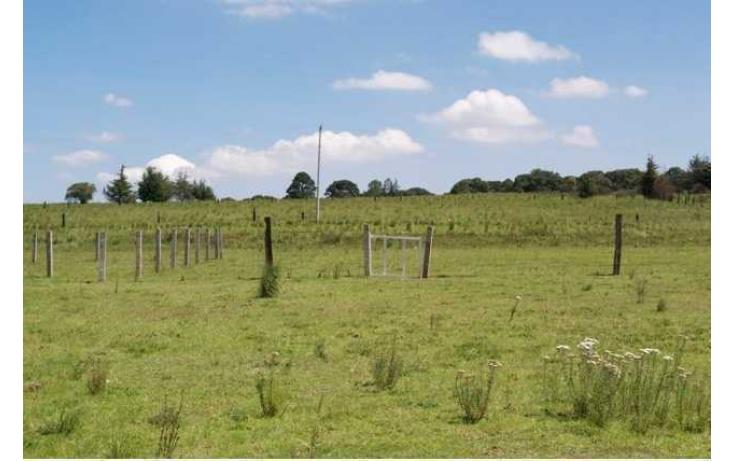 Foto de rancho con id 87047 en venta en paraje de los negritos cadenqui no 07