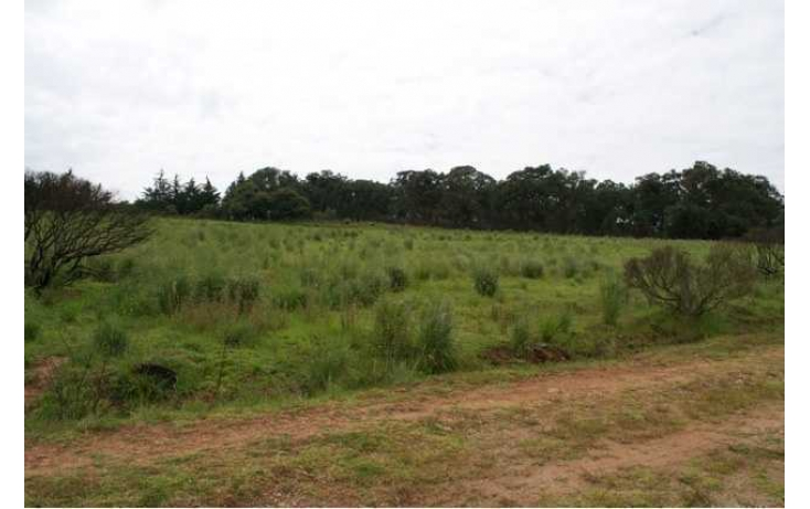 Foto de rancho con id 87047 en venta en paraje de los negritos cadenqui no 09