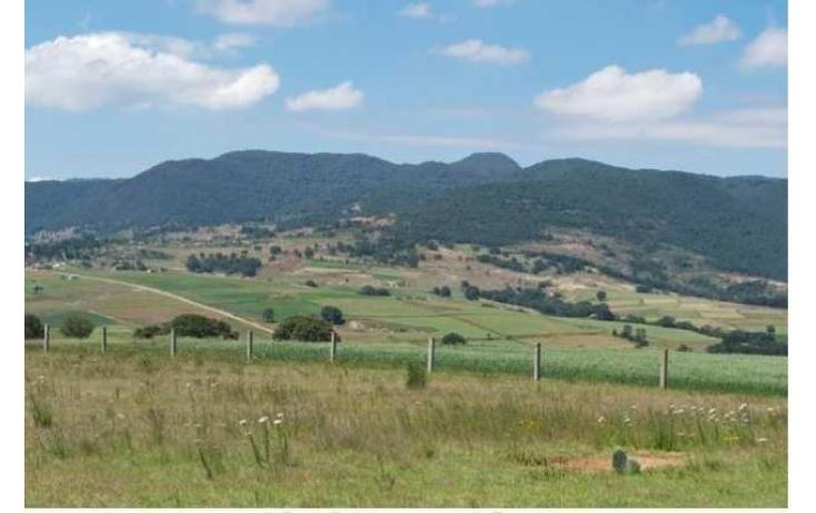 Foto de rancho con id 87047 en venta en paraje de los negritos cadenqui no 10