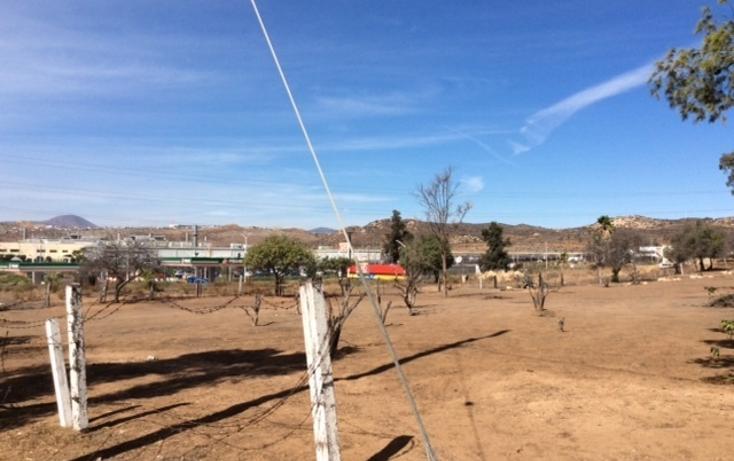 Foto de rancho en venta en  , rancho gandul, tecate, baja california, 1484987 No. 02