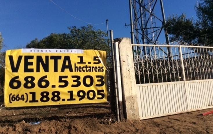 Foto de rancho en venta en  , rancho gandul, tecate, baja california, 1484987 No. 03
