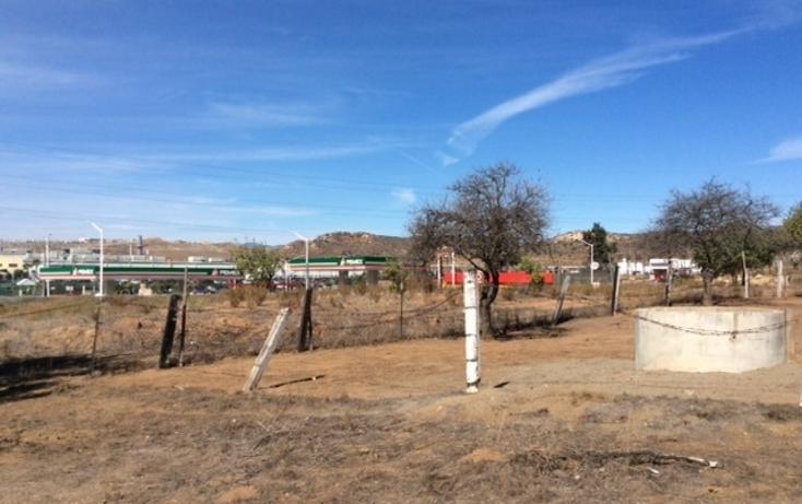 Foto de rancho en venta en  , rancho gandul, tecate, baja california, 1484987 No. 04