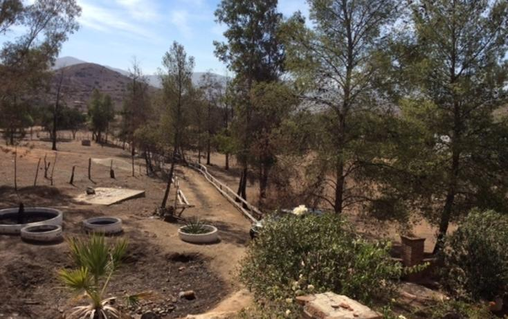 Foto de rancho en venta en  , rancho gandul, tecate, baja california, 1484987 No. 08