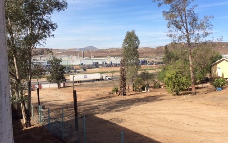 Foto de rancho en venta en  , rancho gandul, tecate, baja california, 1484987 No. 09