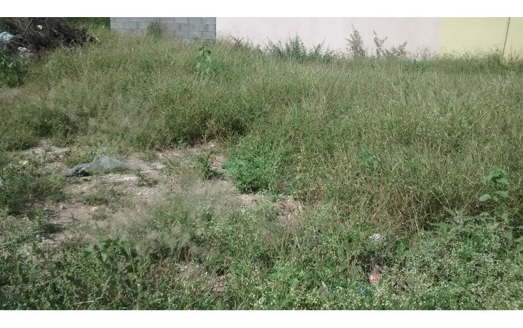 Foto de terreno habitacional en venta en  , rancho grande, reynosa, tamaulipas, 1194373 No. 01