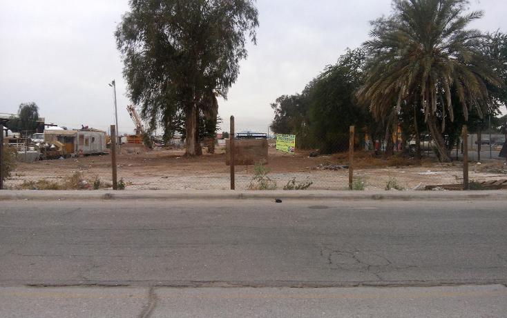 Foto de terreno comercial en venta en  , rancho la bodega, mexicali, baja california, 1207553 No. 03