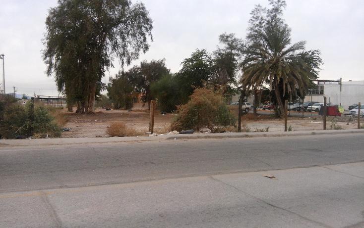 Foto de terreno comercial en venta en  , rancho la bodega, mexicali, baja california, 1207553 No. 05