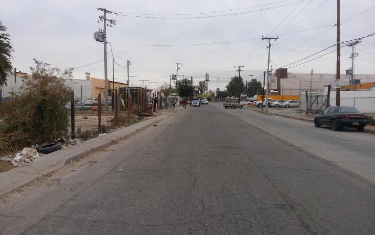 Foto de terreno comercial en venta en  , rancho la bodega, mexicali, baja california, 1207553 No. 06