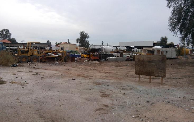 Foto de terreno comercial en venta en  , rancho la bodega, mexicali, baja california, 1207553 No. 08