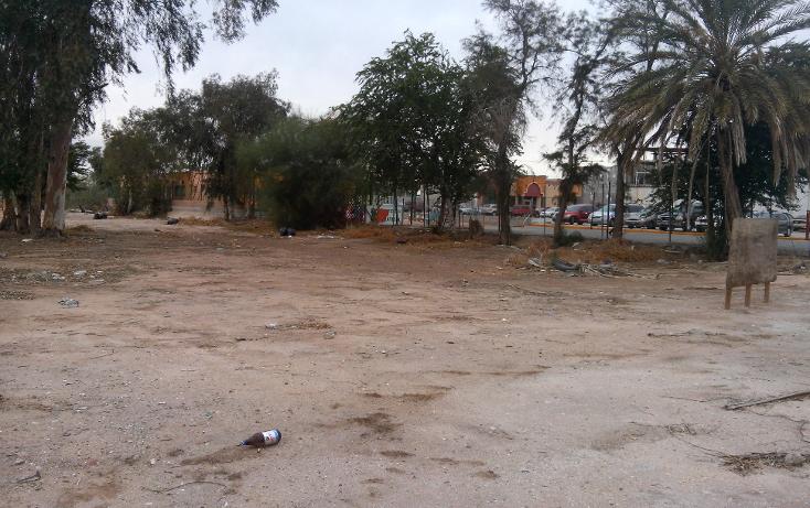 Foto de terreno comercial en venta en  , rancho la bodega, mexicali, baja california, 1207553 No. 10
