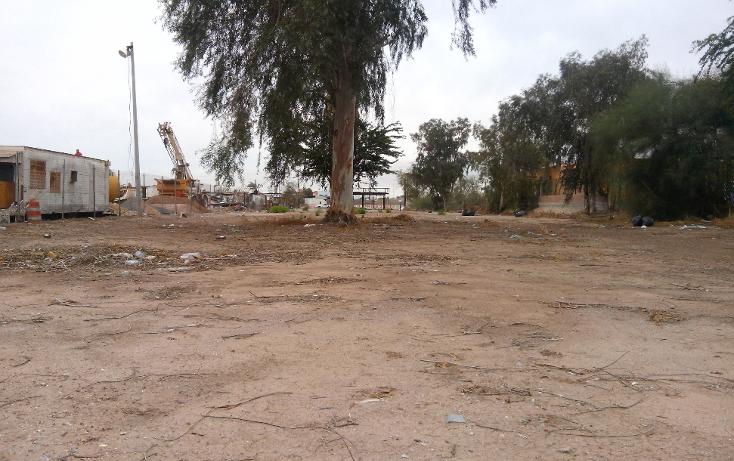 Foto de terreno comercial en venta en  , rancho la bodega, mexicali, baja california, 1207553 No. 11