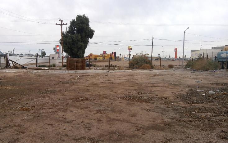 Foto de terreno comercial en venta en  , rancho la bodega, mexicali, baja california, 1207553 No. 12