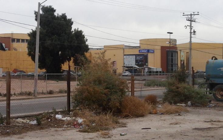 Foto de terreno comercial en venta en  , rancho la bodega, mexicali, baja california, 1207553 No. 13