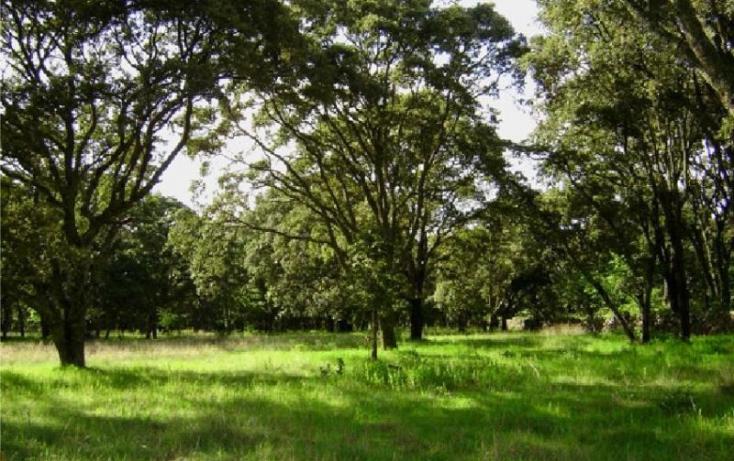 Foto de rancho en venta en rancho la carbonera 444, canalejas, jilotepec, estado de méxico, 701359 no 01