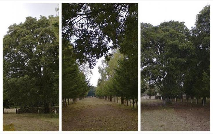 Foto de rancho en venta en rancho la carbonera 444, canalejas, jilotepec, estado de méxico, 701359 no 05