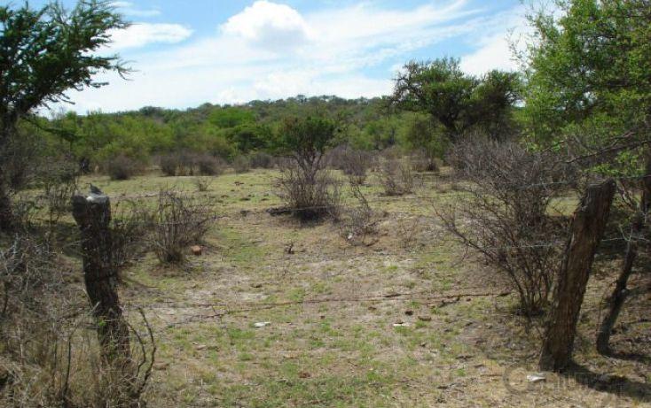 Foto de rancho en venta en rancho la zocona sn, teocaltiche centro, teocaltiche, jalisco, 1960621 no 02