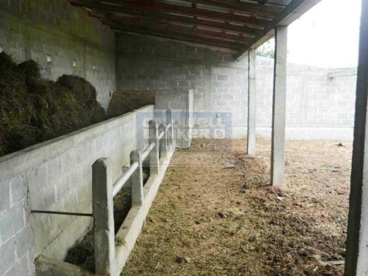 Foto de rancho en venta en  , el llanito, dolores hidalgo cuna de la independencia nacional, guanajuato, 534013 No. 02