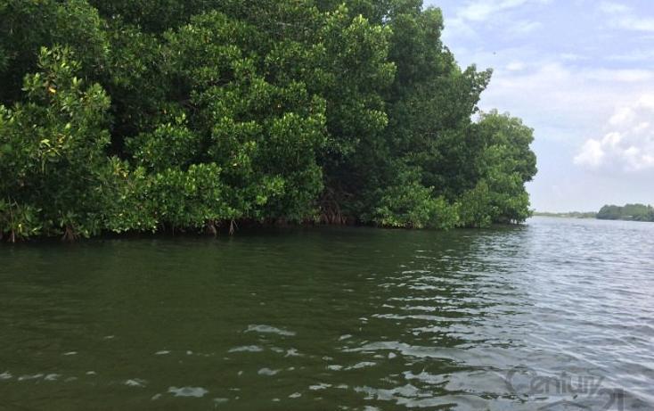 Foto de terreno habitacional en venta en rancho las palmas s/n , pesquería boca del cielo, tonalá, chiapas, 1704888 No. 02