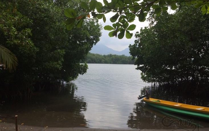 Foto de terreno habitacional en venta en rancho las palmas s/n , pesquería boca del cielo, tonalá, chiapas, 1704888 No. 03