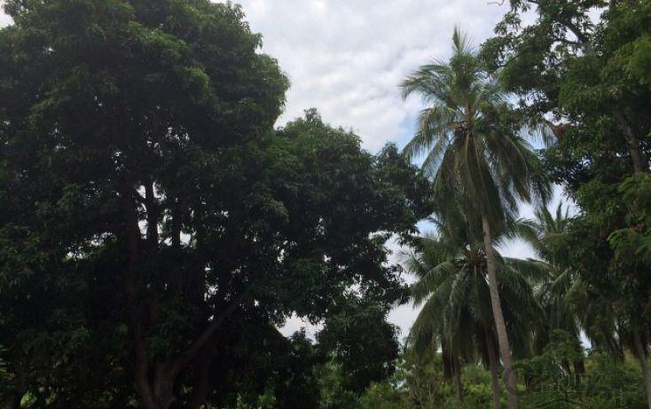 Foto de terreno habitacional en venta en rancho las palmas sn, pesquería boca del cielo, tonalá, chiapas, 1704888 no 05
