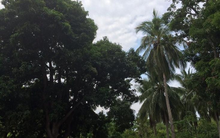 Foto de terreno habitacional en venta en rancho las palmas s/n , pesquería boca del cielo, tonalá, chiapas, 1704888 No. 05
