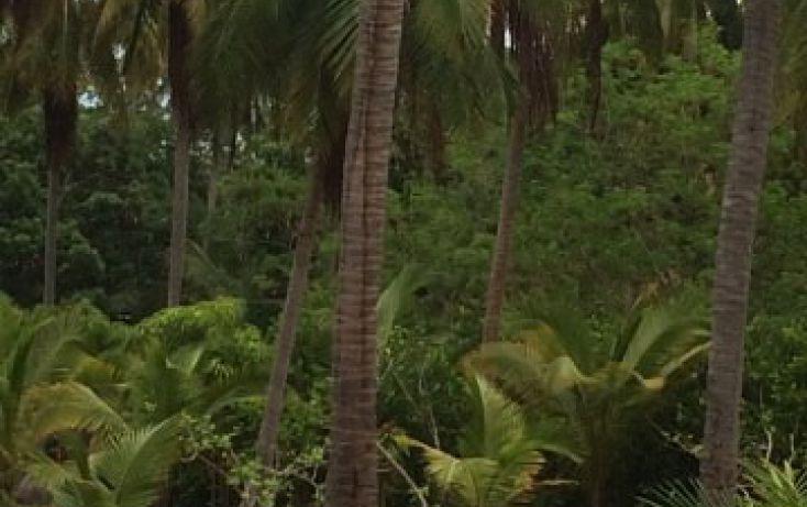 Foto de terreno habitacional en venta en rancho las palmas sn, pesquería boca del cielo, tonalá, chiapas, 1704888 no 06