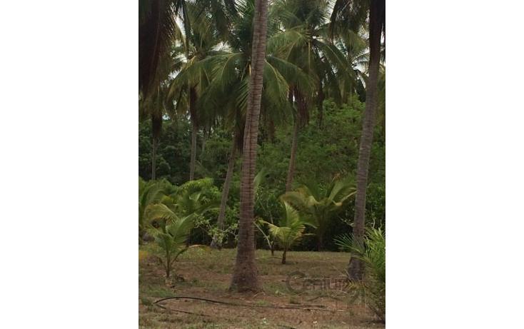 Foto de terreno habitacional en venta en rancho las palmas s/n , pesquería boca del cielo, tonalá, chiapas, 1704888 No. 06